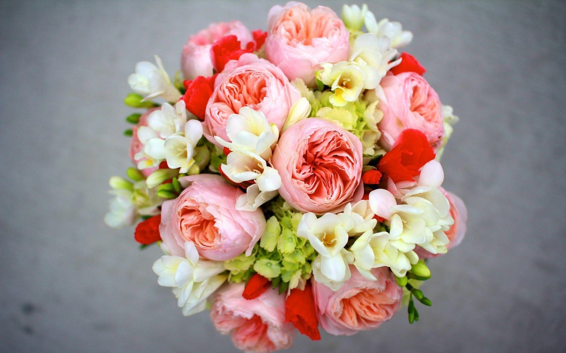 Pivoine Freesia Hortensia Bouquet De Fleurs Fonds D Ecran