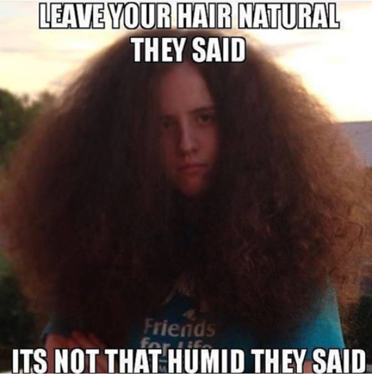 Frizzy Hair Day Meme