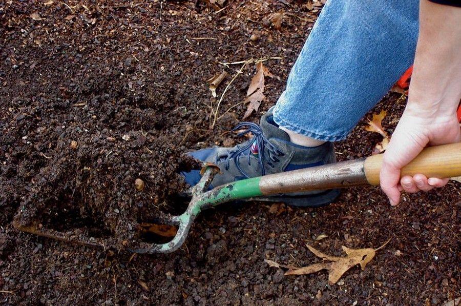 Best Soil for Vegetable Garden . Garden soil, Organic