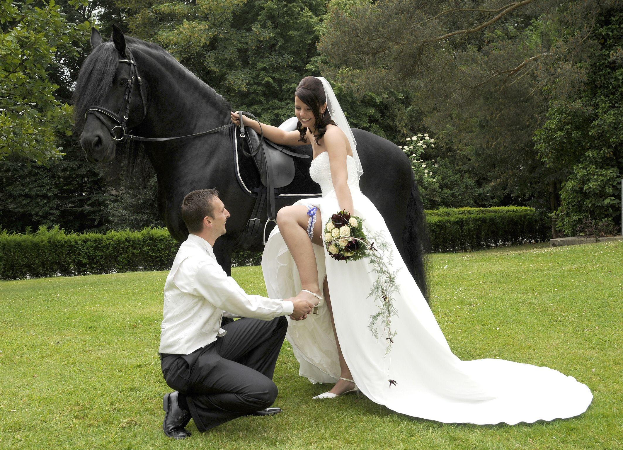 Pin Von Cesar Pedrosa Auf Wedding Ideas Braut Brautsammlung Schwarzes Pferd