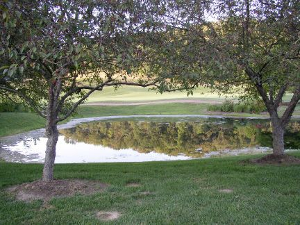 Windmill Aeration and Pond Aeration for healthy ponds :: Outdoor ...