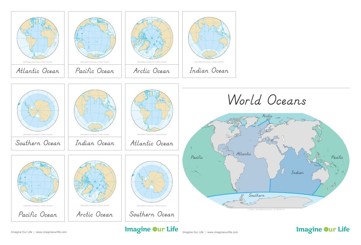 Animals Of The Ocean For The Montessori Wall Map