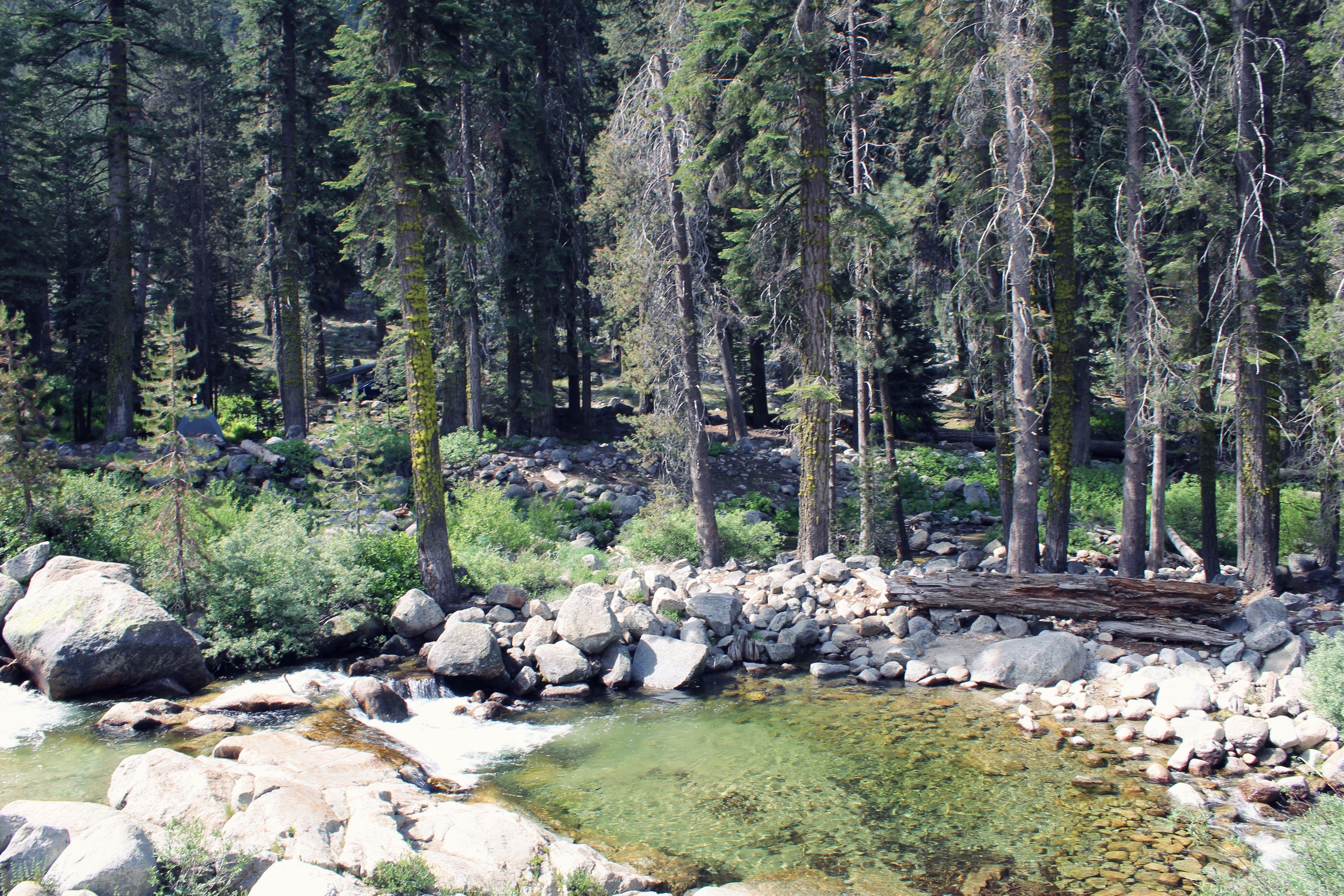 Clear mountain streams in California | chescaislost