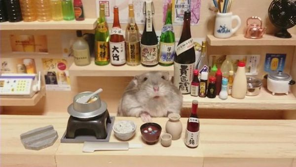 Cute Hamster Waiters 'Serving' Sushi And Sake In A Miniature Japanese Bar