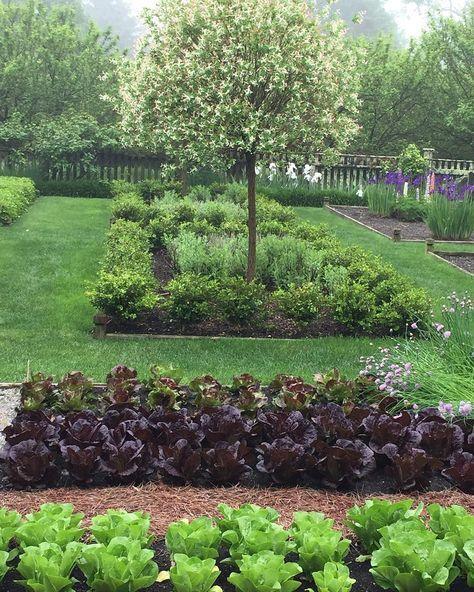 Edible Landscaping: Kitchen Garden via Ina Garten Instagram | jardin potager | bauerngarten | köksträdgård