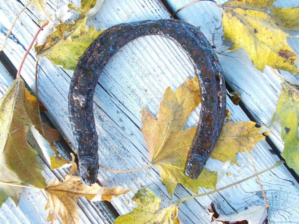Horseshoe vintage iron plow horse farm relic antique old