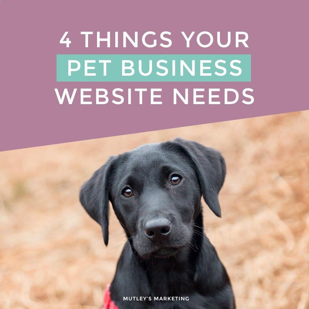 4 Things Your Pet Business Website Needshttp Www Mutleysmarketing Co