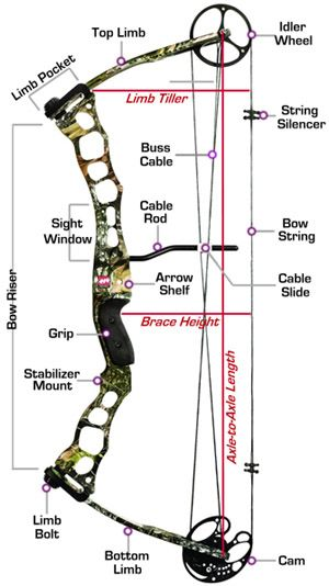 Compound Bow Selection Guide There Is A Lot To Read On This Site