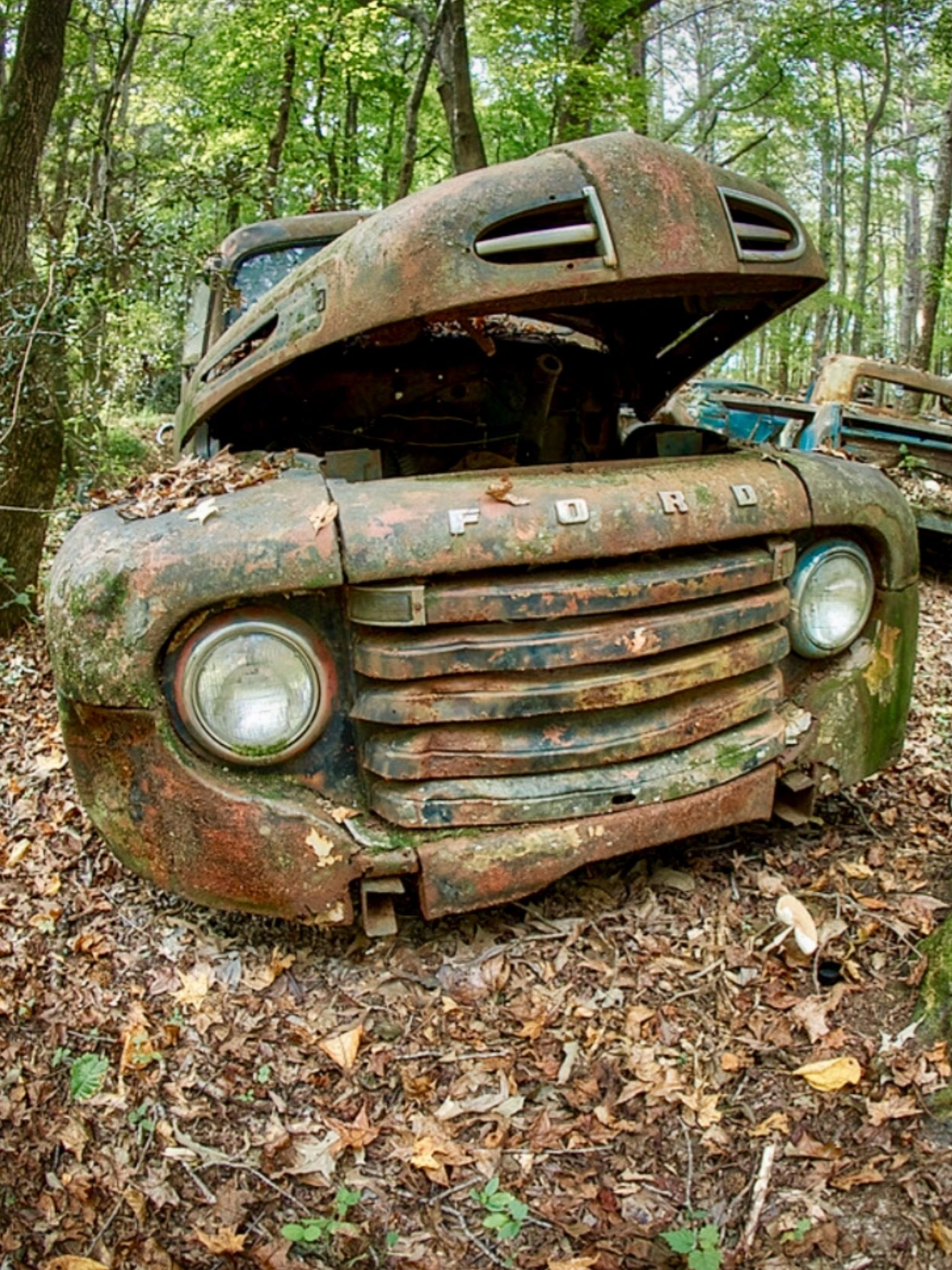 Oldcarcity. Atlanta Georgia. Rusty old Ford. Source ...