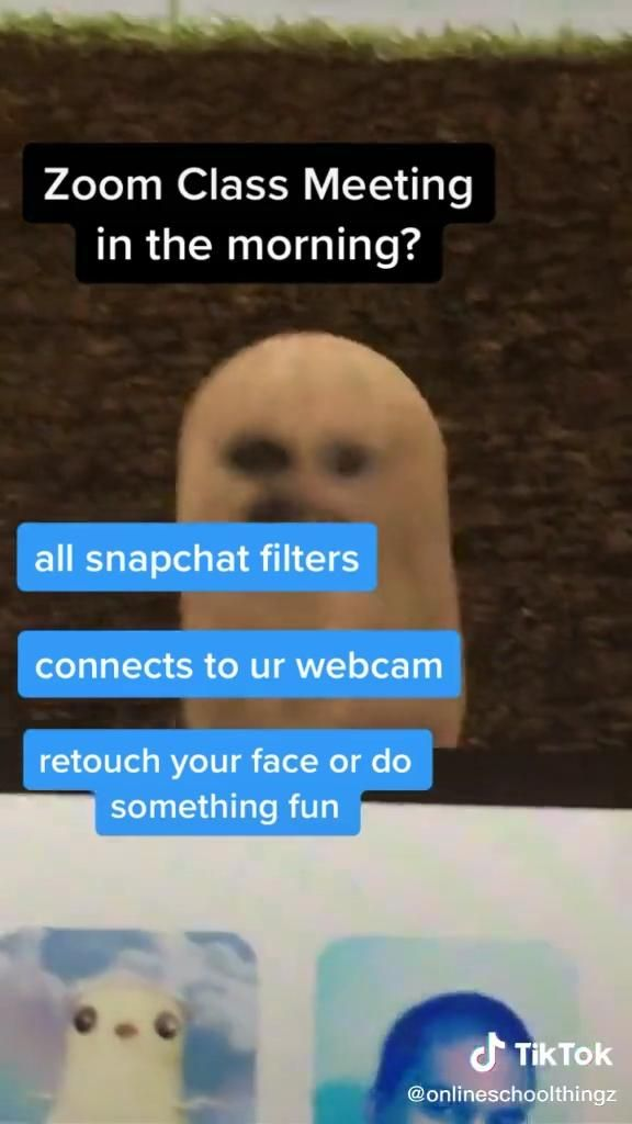 I Wanna Add A Snap Filter On Zoom Here Is How You Do It Video In 2021 Life Hacks For School Student Hacks School Study Tips