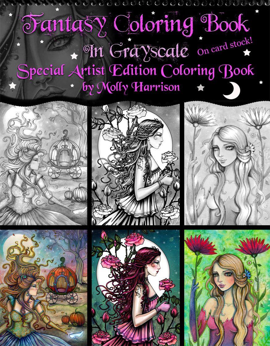 Picture Fairy Coloring Book Coloring Books Mandala Coloring Books