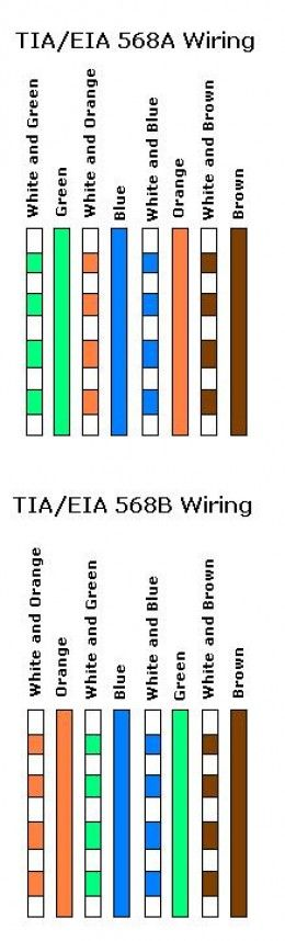 cat 5 / 6 cabling standard and cable type | cable, Wiring diagram