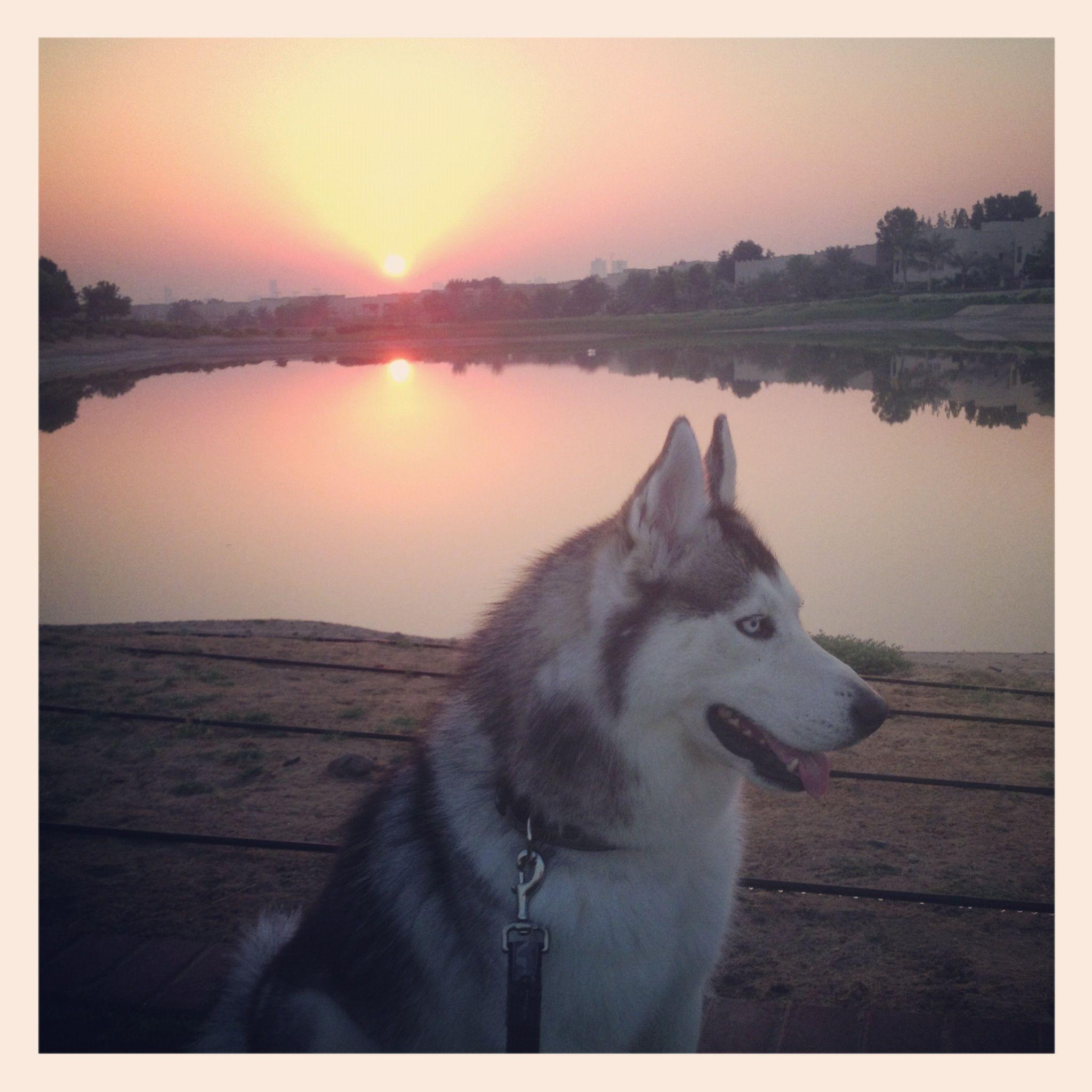 beautiful boy, beautiful sky