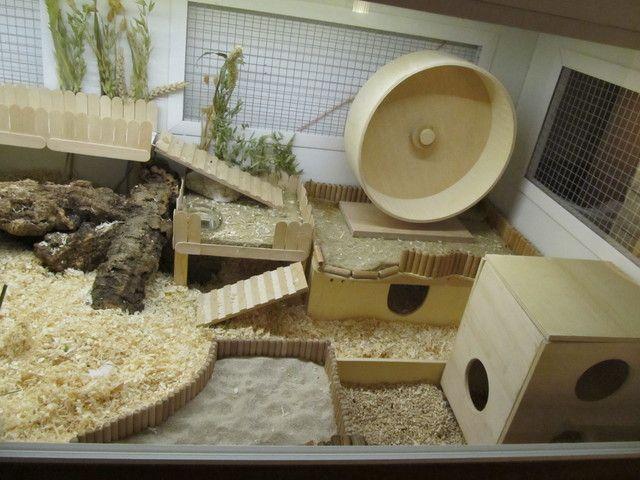 Naturnahe Hamstergehege Schoner Wohnen Gehegewand Mit 4 Gehegen A 148x65 Hamster Gehege Hamster Hamster Lebensraum