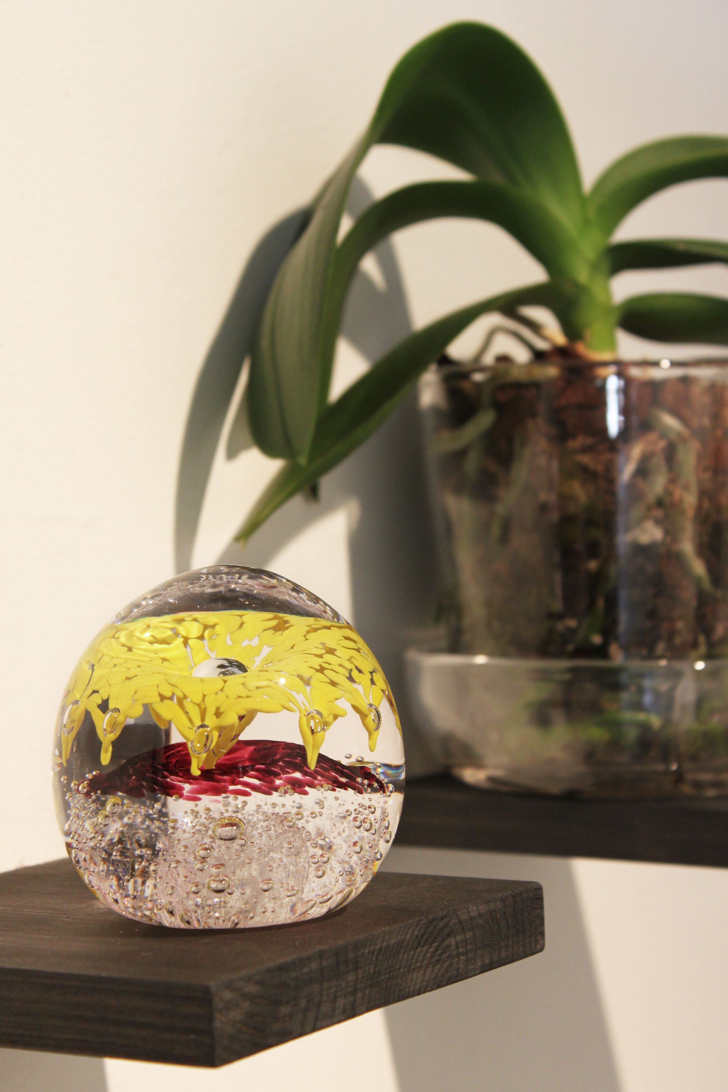 Colorful glass paper weight by Kari Alakoski. Orchid plant pot made of glass by Mafka.