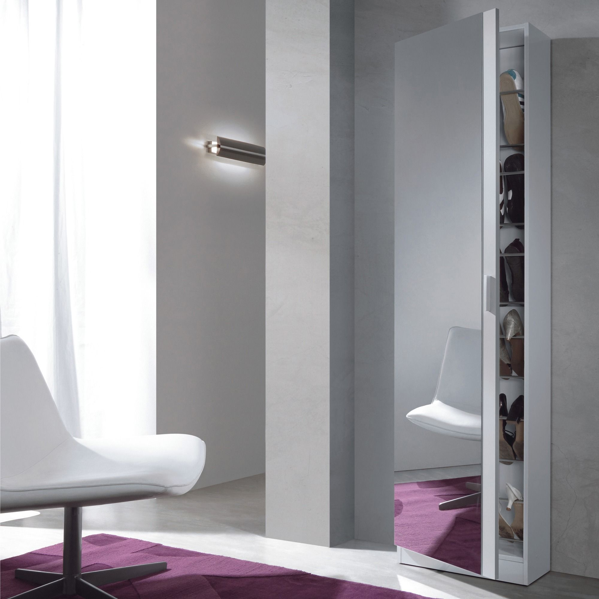Amoire Range Chaussures Miroir Twin 3 Suisses Shoe Storage Cabinet Hallway Shoe Storage Mirror Door