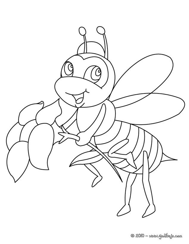 Dibujo para colorear : ABEJA CON UNA FLOR | coloring pages ...