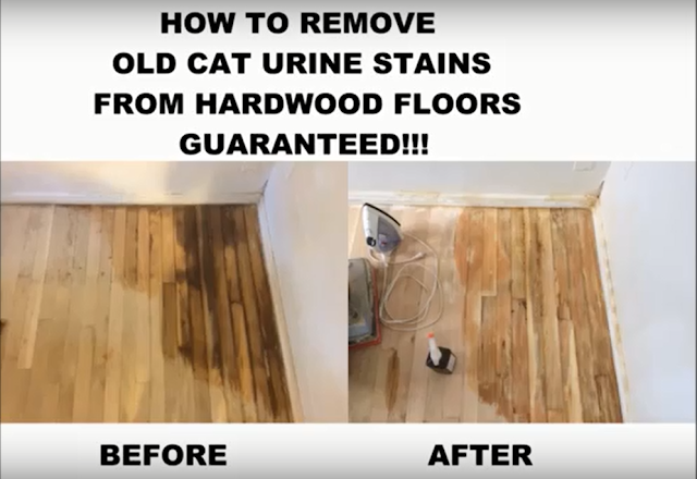 How To Remove Hardwood Floor Stains, How To Get Urine Stain Out Of Laminate Flooring