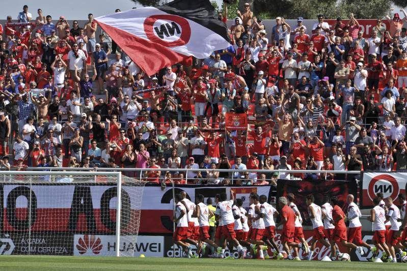 Lotacao Esgotada Em Treino Do Benfica Treino Futebol Sport Lisboa E Benfica