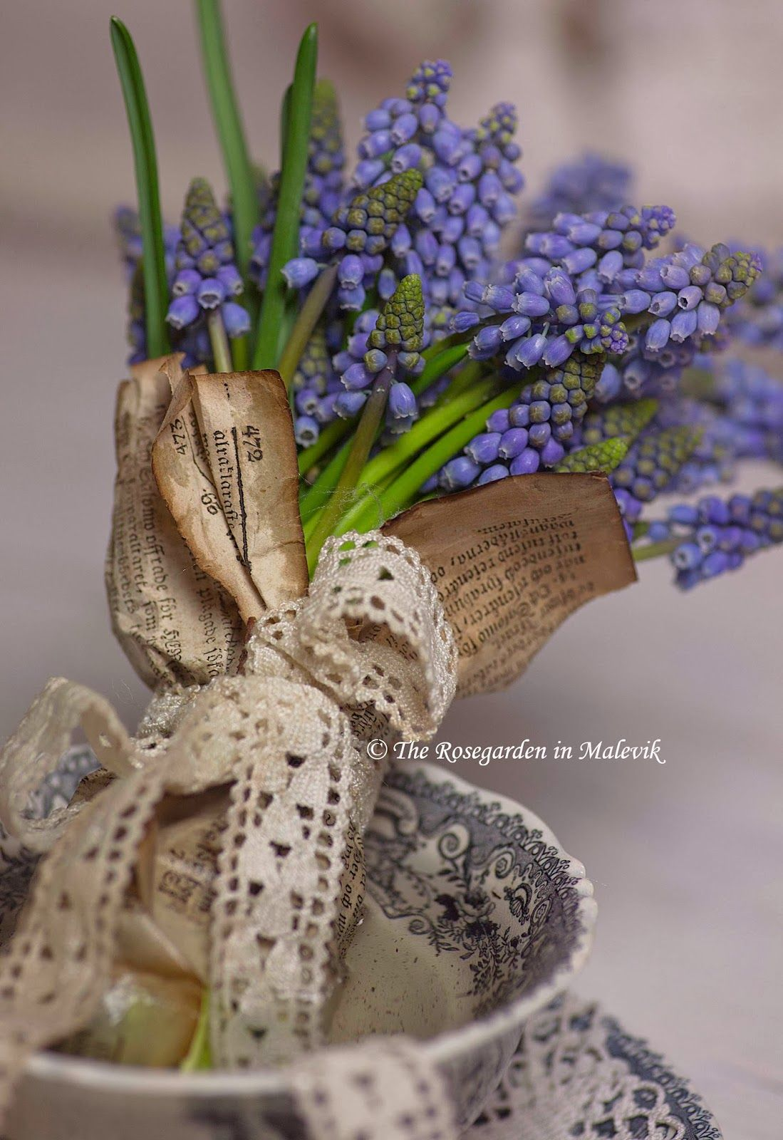 grape hyacinths heidi gruber pinterest fr hling. Black Bedroom Furniture Sets. Home Design Ideas