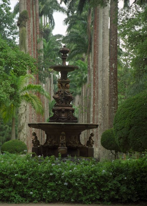 Botanical Garden(Jardim Botanico), Rio de Janeiro