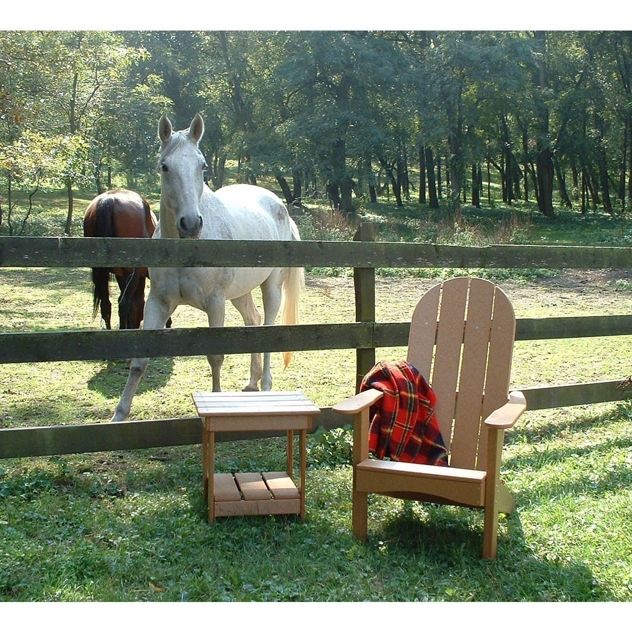 Tailwind furniture recycled plastic round back adirondack chair