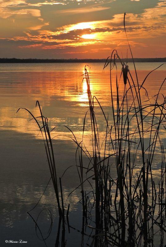 Nature Paysage photo Lake Sun Set belle image Poster Print