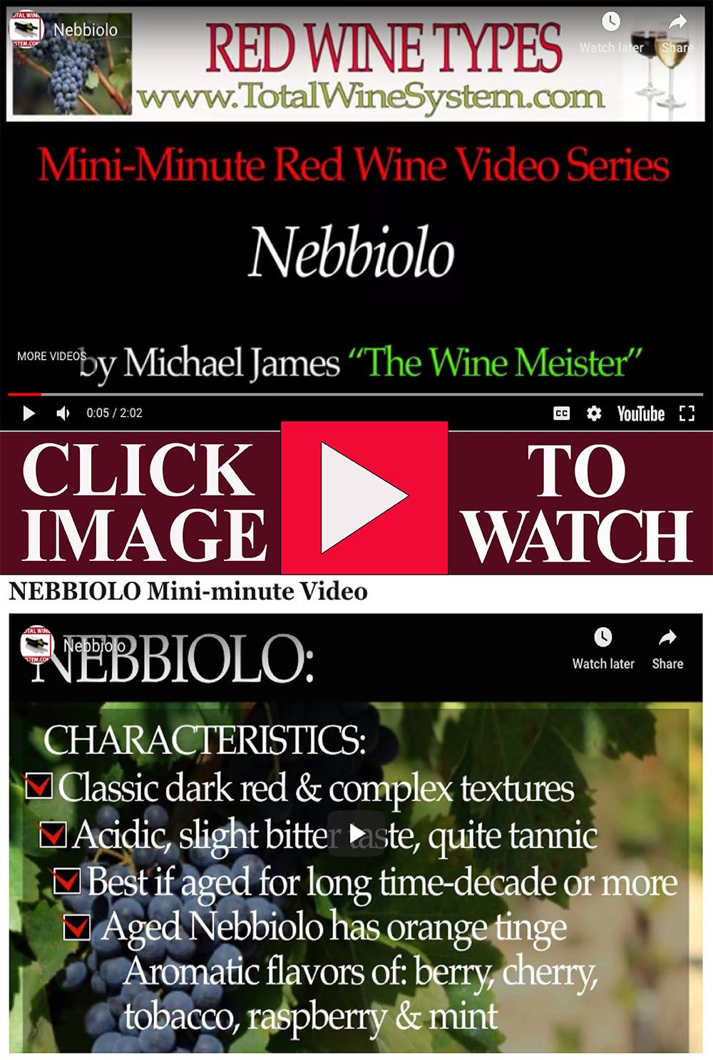 Nebbiolo Video Red Wine Wine Variety Types Of Red Wine