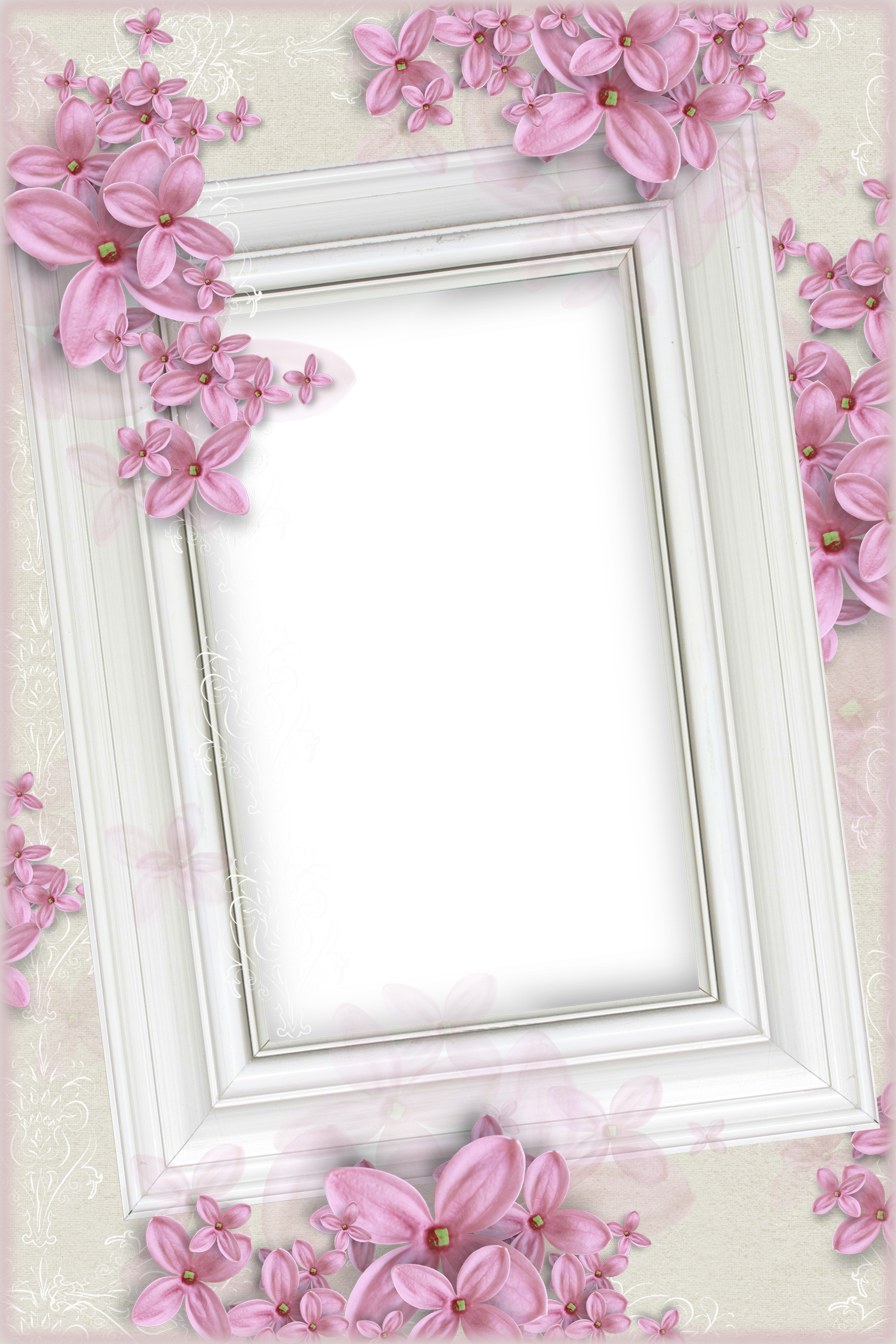 Delicate White Transparent Frame with Pink Flowers