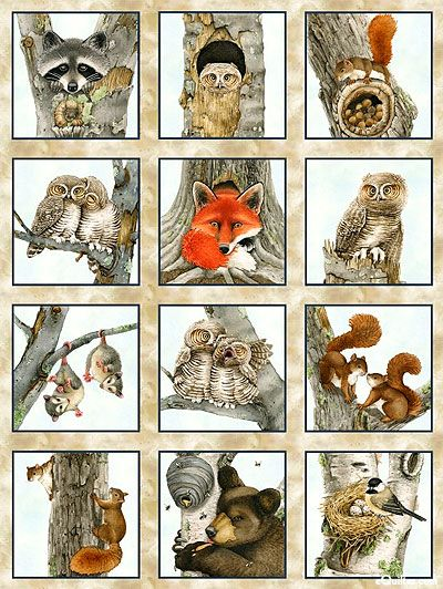 Hoo S Tree Forest Animal Beginnings Tan 24 X 44 Panel
