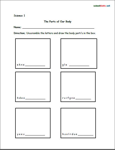 Science Worksheet | Class | Pinterest | Worksheets, Free printable ...