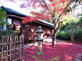 奈良国立博物館秋の庭園を散策しませんかで紅葉や茶室を楽しもう奈良県LINEトラベルjp 旅行ガイド