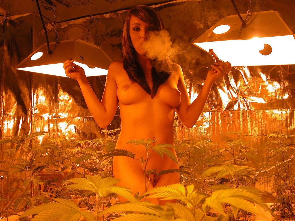 naked girls smoking weed book