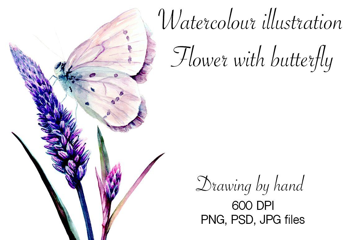 Watercolour butterfly by Verlena\'s Corner on @creativemarket ...