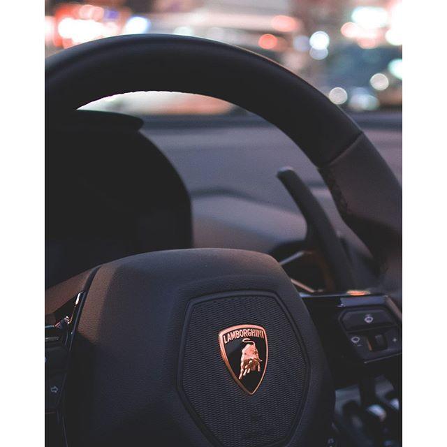 Lamborghini Veneno, Lamborghini