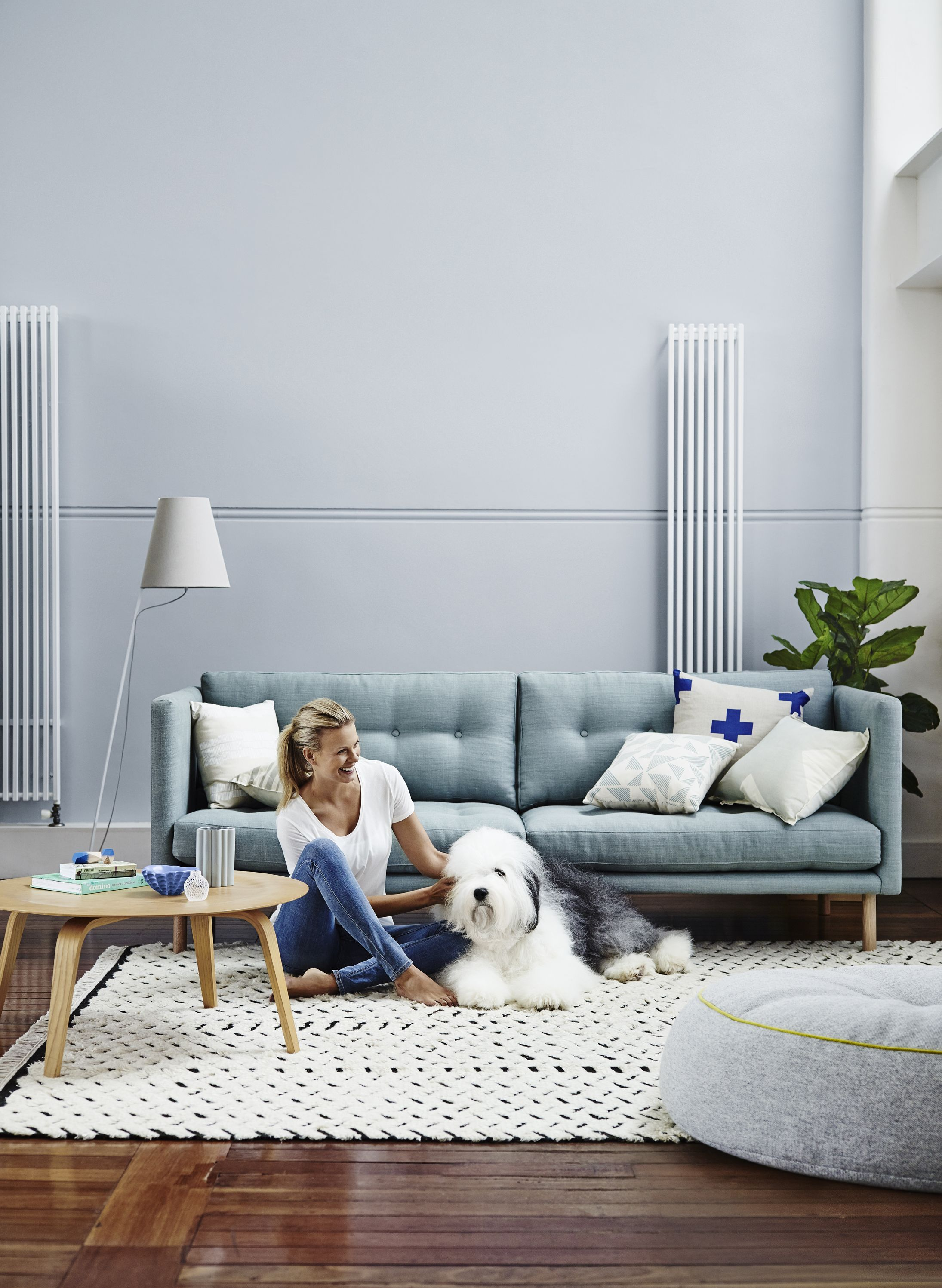 Gentil Blue Living Room With Throw Rug   Inspirations Paint: Mobile