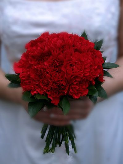 My Dream Bouquet Would Consist Simply Of Red Carnations They Re Less Expensive Than Roses An Carnation Wedding Small Wedding Bouquets Tropical Wedding Flowers