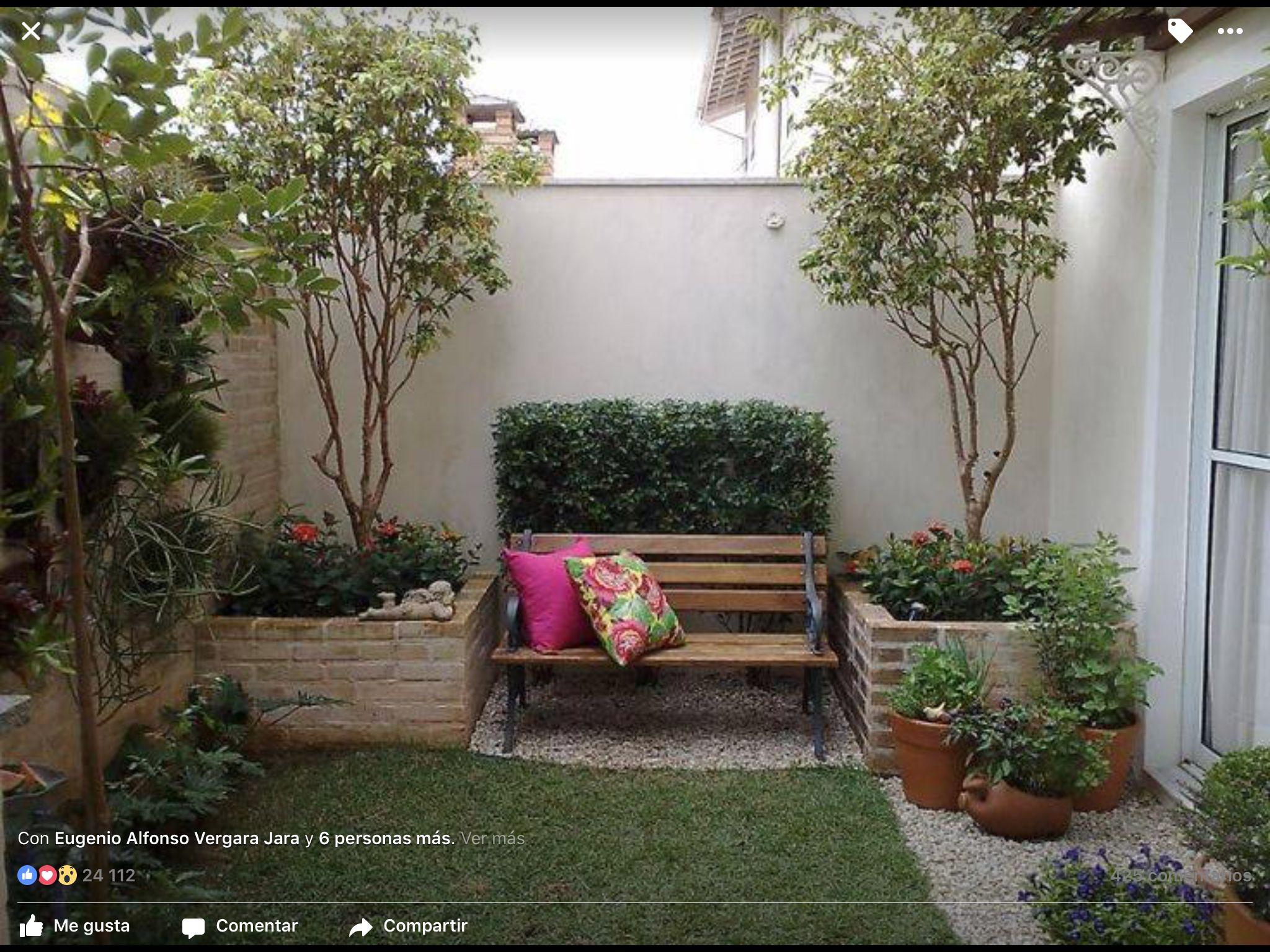 Jard n interior Plantas ornamentales Pinterest