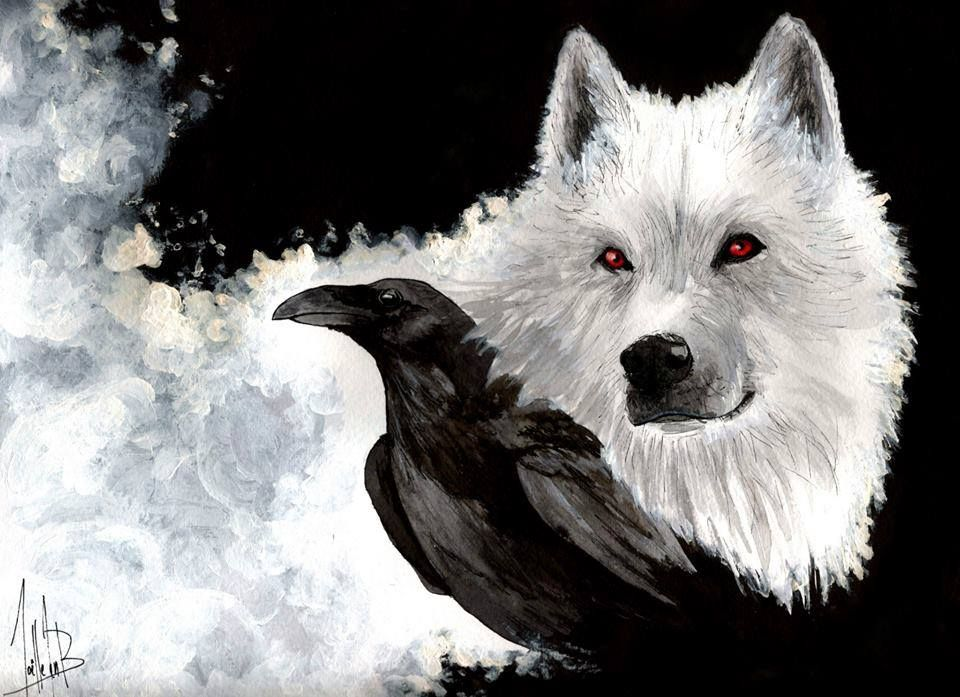 Wolf And The Raven Wolf Spiritual Meanings Sharp Intelligence