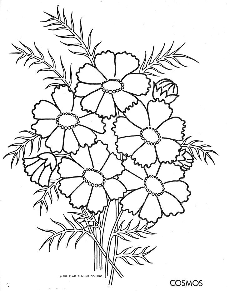 Daisy Coloring Pages Complicated