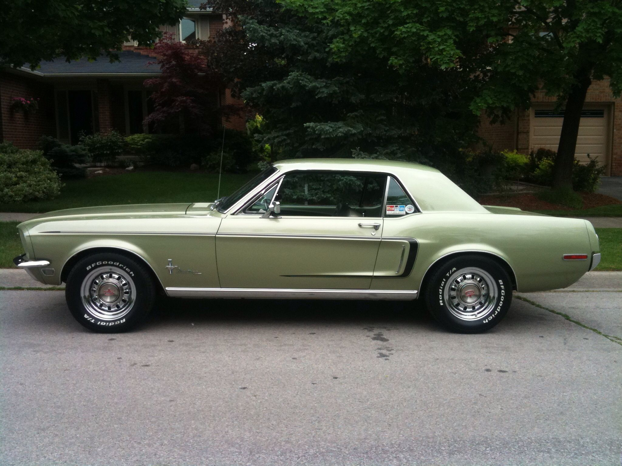 My 68 Lime Gold Mustang | Drivers resume | Pinterest | Mustang, Ford ...