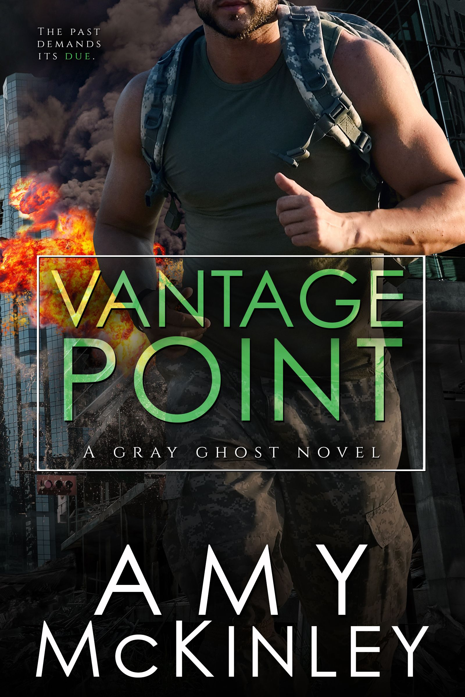 Vantage Point (A Gray Ghost Novel) by AmyMcKinley7 is