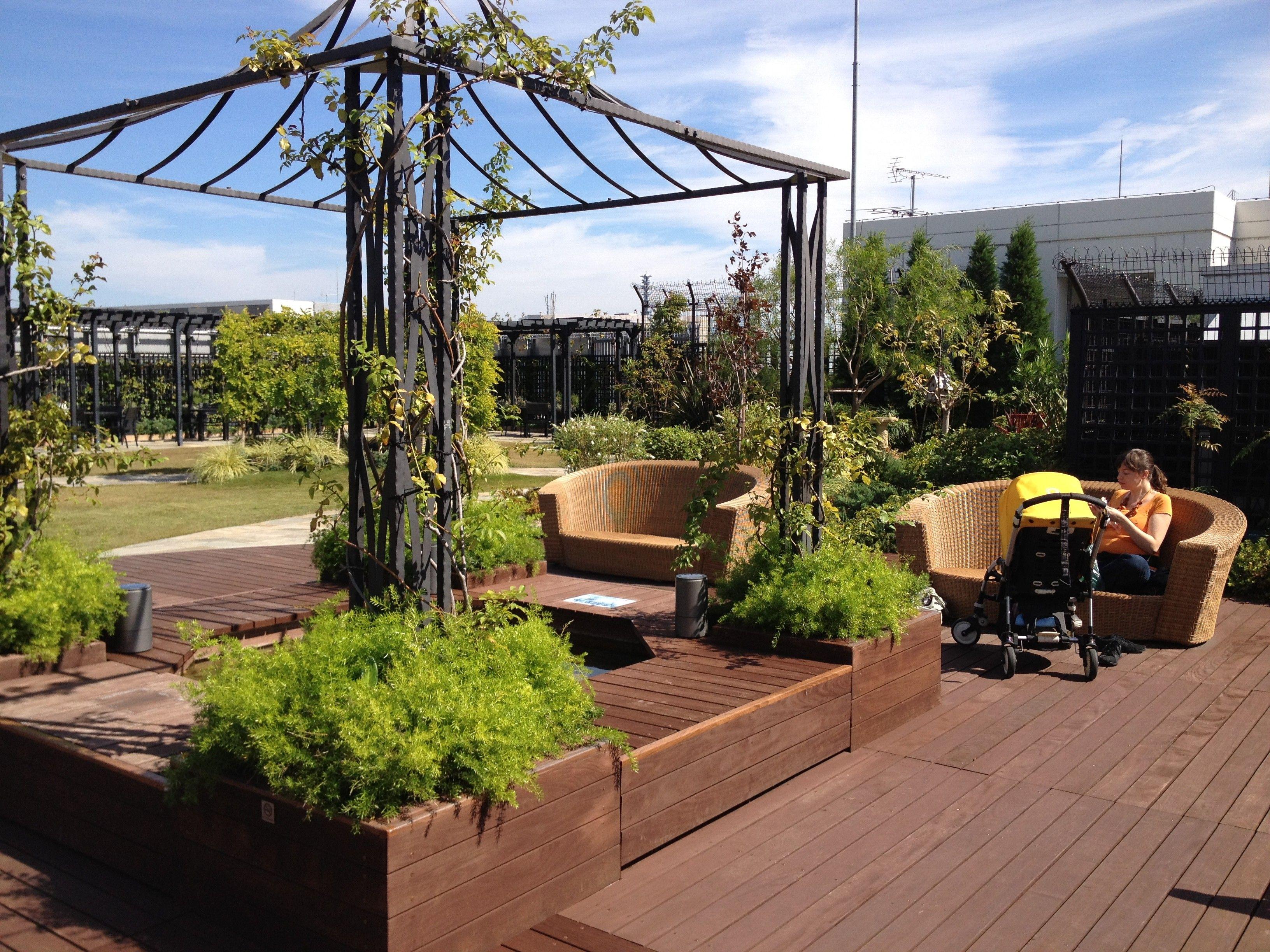 Modern Roof Garden Design Ideas Inspiration - Brown Nature Garden ...
