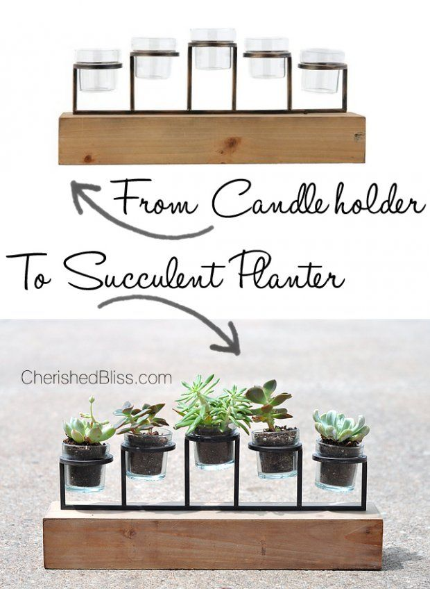 10 Diy Decorating Ideas Succulent Planter Diy Succulents Diy