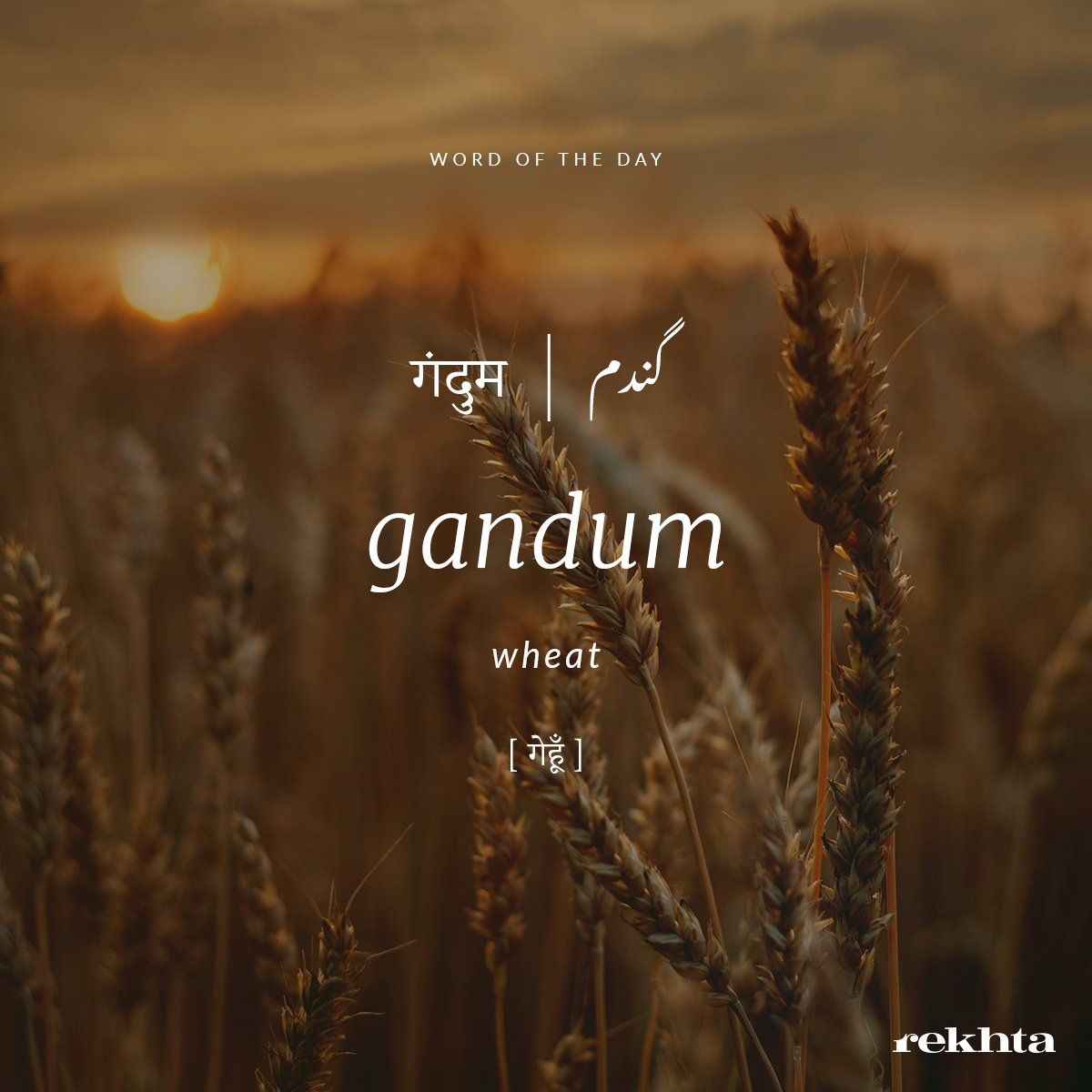 Rekhta on in 2020 Urdu words with meaning, Urdu words