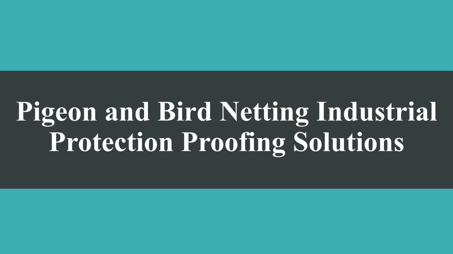 Best industrial bird netting and bird proofing solutions