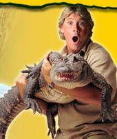 Croc Files - TV Review