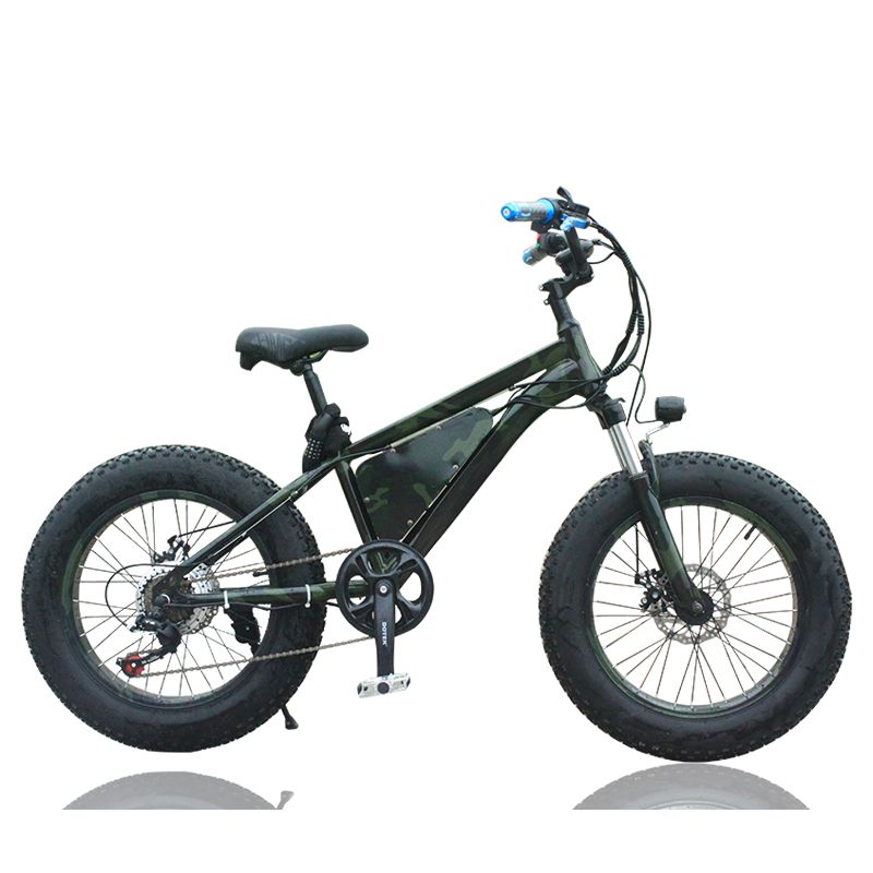 Electric Bicycle 20 Inch Lithium Snowmobile 36v Bike Shock