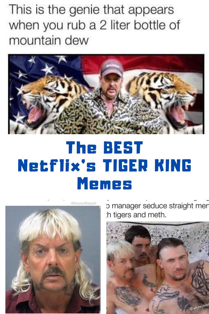 The Best Netflix S Tiger King Memes In 2020 King Meme Memes Funny Tiger