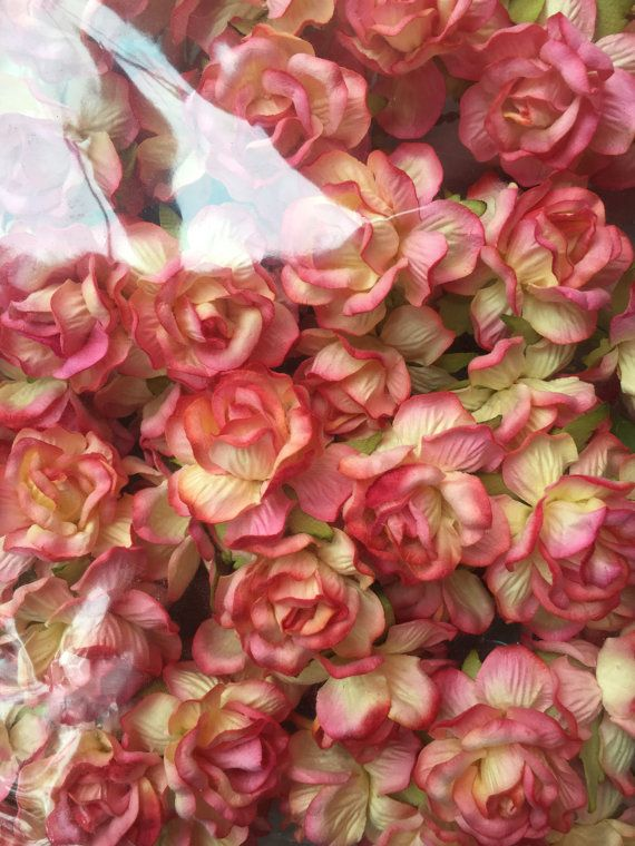 20 Large Two Tone Pink Yellow Mulberry Roses Paper Flowers Size